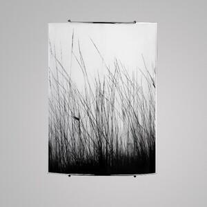 Настенно-потолочный светильник Nowodvorski 5651 black glass